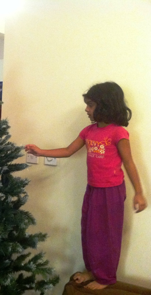 This was taken when Namnam was helping her father set up the X-mas tree, the year before last,