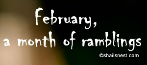 february ramblings